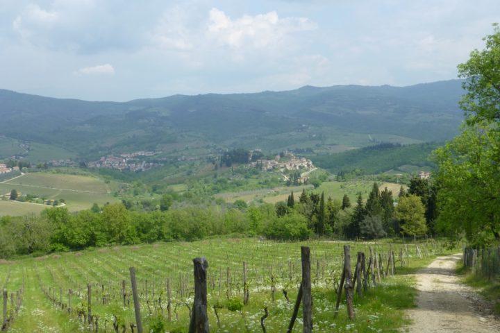 Italy Explore Firenze Siena