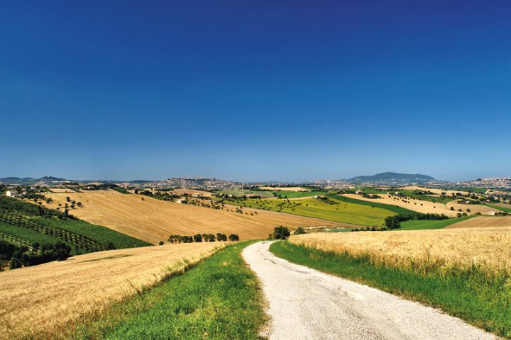 Marche discovering antique food traditions Italy Explore Marche
